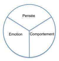 Outil simple et puissant pour l'accompagnement sur les comportements